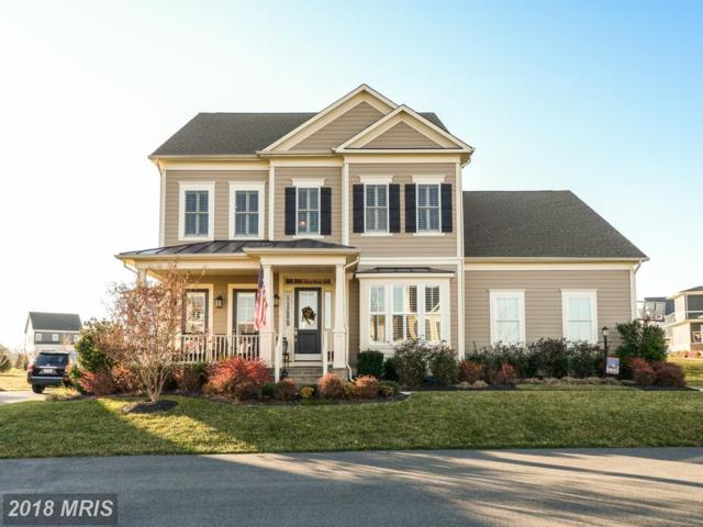 23705 Lentils Lane, Ashburn, VA 20148 (#LO10155312) :: The Bob & Ronna Group