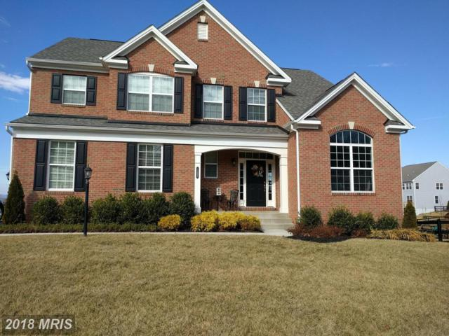 13495 Eagles Rest Drive, Leesburg, VA 20176 (#LO10156584) :: The Tom Conner Team