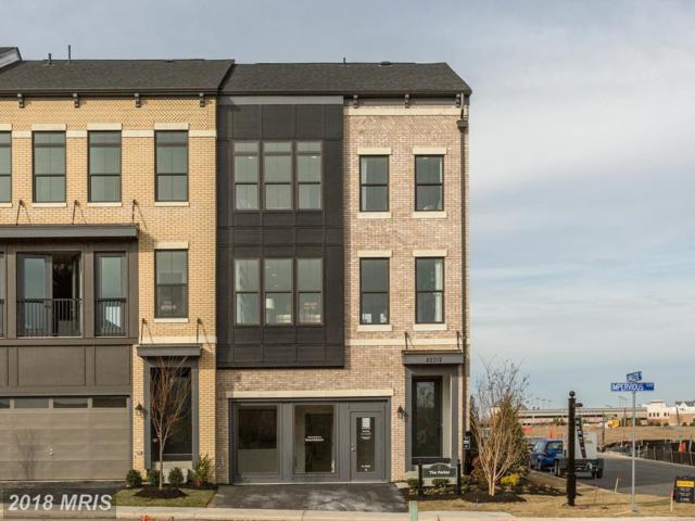 42314 Impervious Terrace, Ashburn, VA 20148 (#LO10156841) :: LoCoMusings
