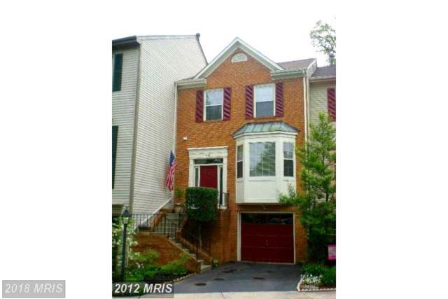 44102 Gala Circle, Ashburn, VA 20147 (#LO10157307) :: Provident Real Estate