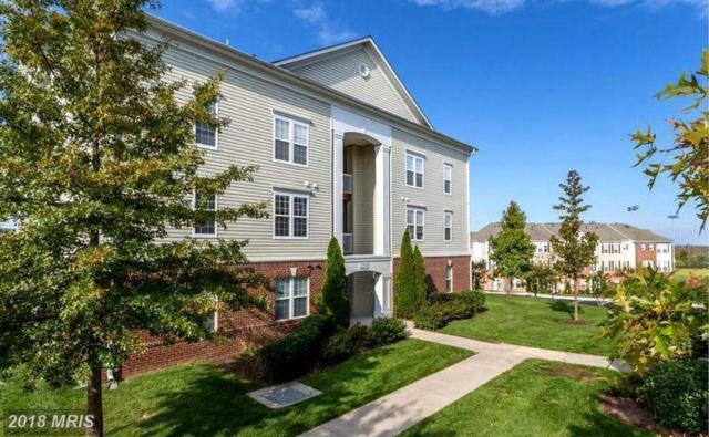 22664 Blue Elder Terrace #201, Ashburn, VA 20148 (#LO10157408) :: LoCoMusings