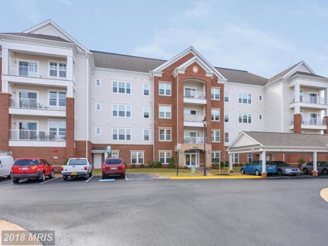 20650 Hope Spring Terrace #103, Ashburn, VA 20147 (#LO10158138) :: Network Realty Group