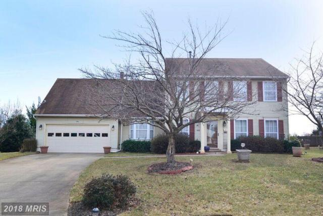 3 Blue Jay Court, Sterling, VA 20164 (#LO10158797) :: Great Falls Great Homes