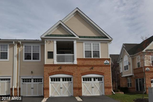 43890 Hickory Corner Terrace #111, Ashburn, VA 20147 (#LO10158862) :: Network Realty Group