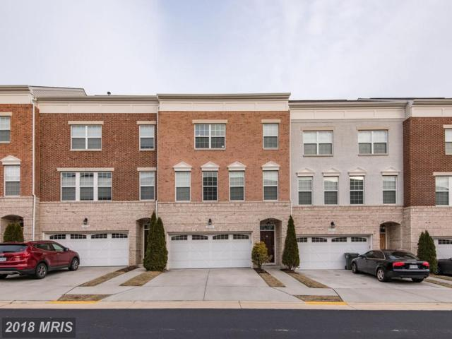 22676 Flowing Spring Square, Ashburn, VA 20148 (#LO10159050) :: CR of Maryland