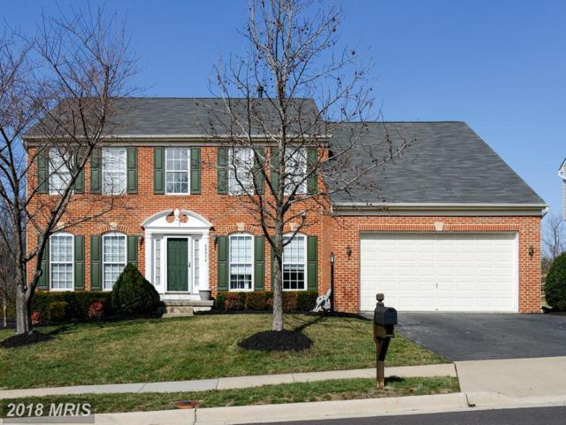 42074 Cherish Court, Aldie, VA 20105 (#LO10159146) :: The Vashist Group
