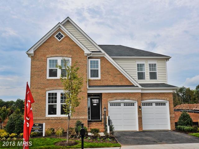 25284 Abney Wood Drive, Chantilly, VA 20152 (#LO10159868) :: Network Realty Group