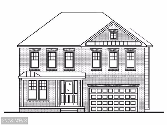 25300 Abney Wood Drive, Chantilly, VA 20152 (#LO10159887) :: Network Realty Group