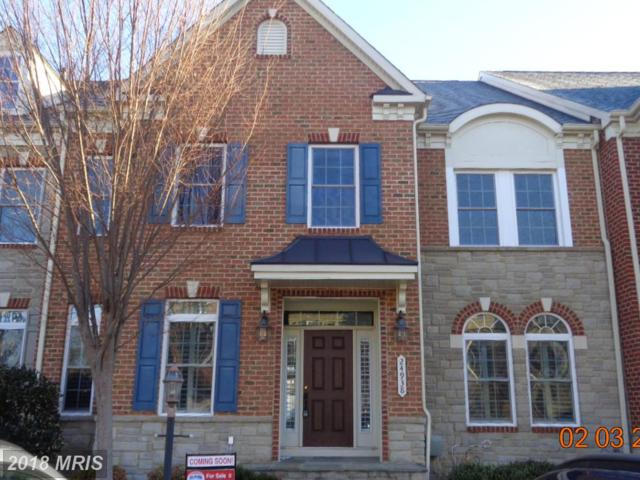 24938 Bannockburn Terrace, Chantilly, VA 20152 (#LO10159993) :: Network Realty Group