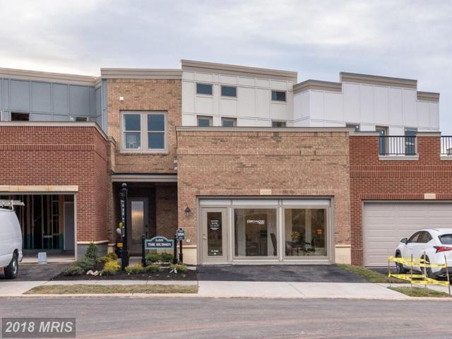 42803 Cumulus Terrace #2, Brambleton, VA 20148 (#LO10160685) :: AJ Team Realty