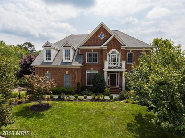 18908 Goose Bluff Court, Leesburg, VA 20176 (#LO10160687) :: The Greg Wells Team