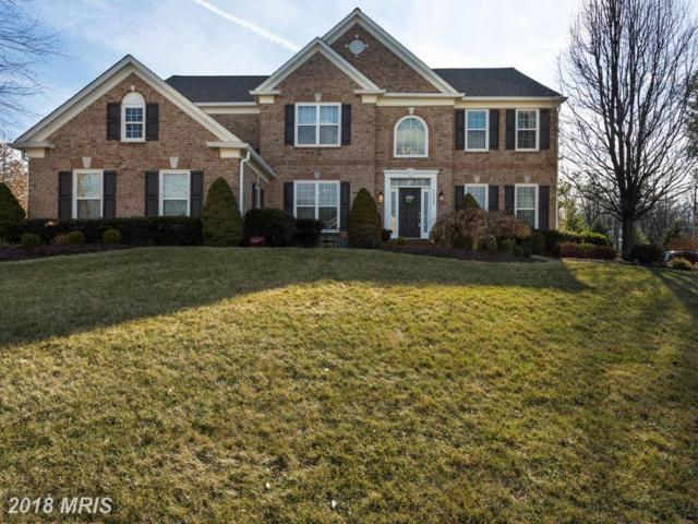 43723 Woodville Court, Chantilly, VA 20152 (#LO10160808) :: RE/MAX Gateway