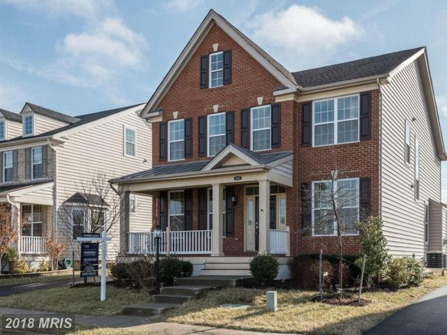 43213 Barnstead Drive, Ashburn, VA 20148 (#LO10161128) :: Labrador Real Estate Team