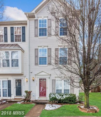 44243 Litchfield Terrace, Ashburn, VA 20147 (#LO10161212) :: Labrador Real Estate Team