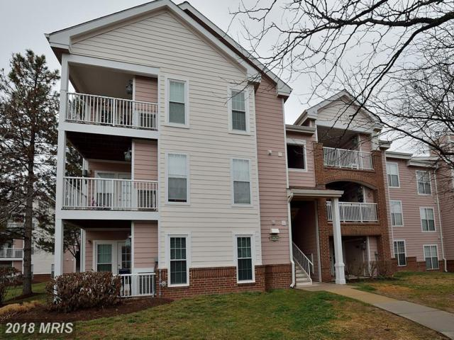 21029 Timber Ridge Terrace #101, Ashburn, VA 20147 (#LO10161305) :: Pearson Smith Realty