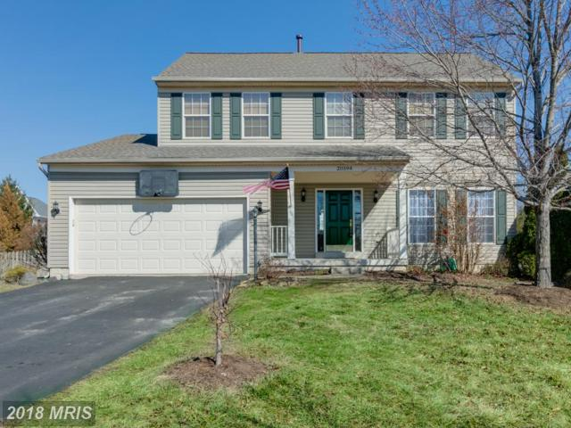 20594 Coppersmith Drive, Ashburn, VA 20147 (#LO10161356) :: Labrador Real Estate Team