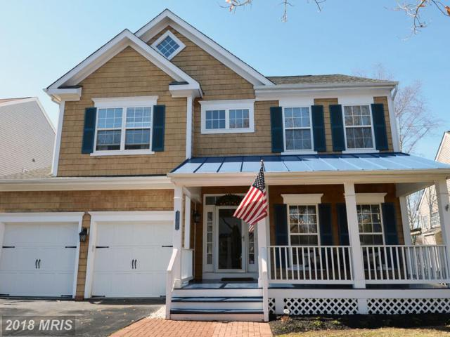 26157 Rachel Hill Drive, Chantilly, VA 20152 (#LO10161434) :: RE/MAX Gateway