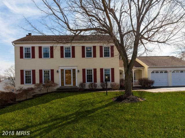 116 Copper Court, Sterling, VA 20165 (#LO10161519) :: Provident Real Estate