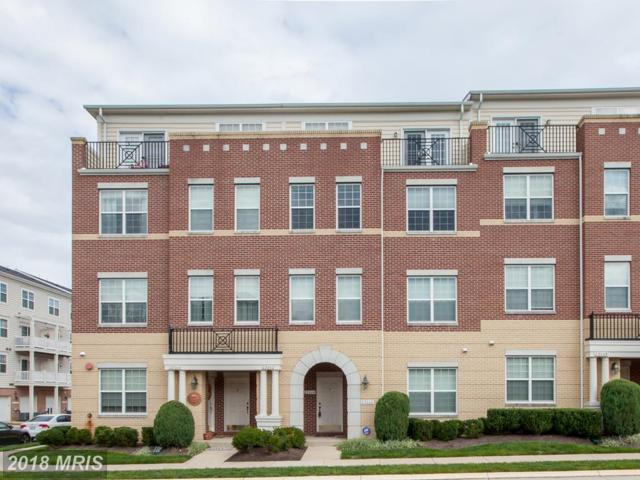 22664 Ferncrest Terrace, Ashburn, VA 20148 (#LO10161592) :: Labrador Real Estate Team