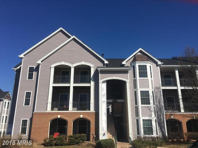 46606 Drysdale Terrace #300, Sterling, VA 20165 (#LO10161859) :: Provident Real Estate