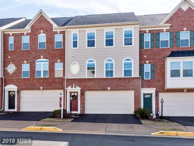 22954 Chestnut Oak Terrace, Sterling, VA 20166 (#LO10161896) :: Provident Real Estate
