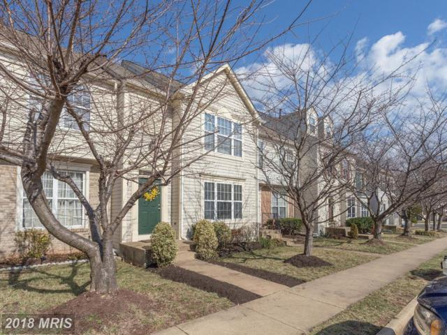22050 Manning Square, Sterling, VA 20166 (#LO10162786) :: Provident Real Estate