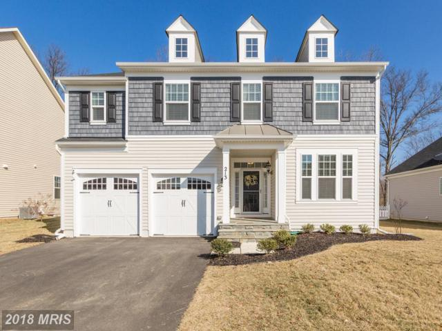 213 Upper Heyford Place, Purcellville, VA 20132 (#LO10162829) :: Pearson Smith Realty