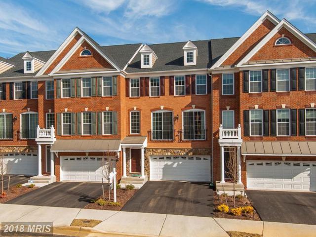 42818 Edgegrove Heights Terrace, Ashburn, VA 20148 (#LO10162941) :: SURE Sales Group