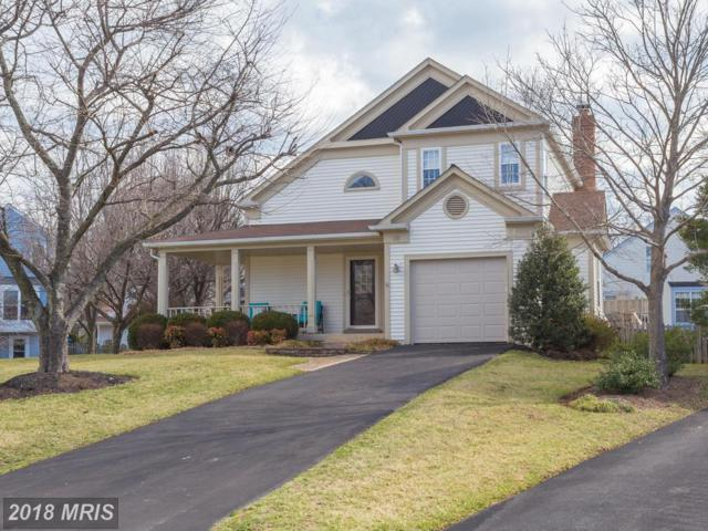 16 Brookmeade Court, Sterling, VA 20165 (#LO10163008) :: Great Falls Great Homes