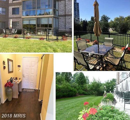 19355 Cypress Ridge Terrace #104, Leesburg, VA 20176 (#LO10163232) :: Pearson Smith Realty