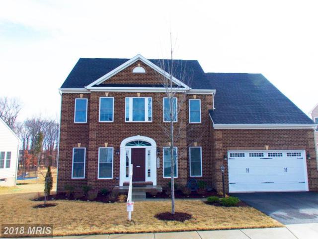25560 Emerson Oaks Drive, Aldie, VA 20105 (#LO10163266) :: Pearson Smith Realty