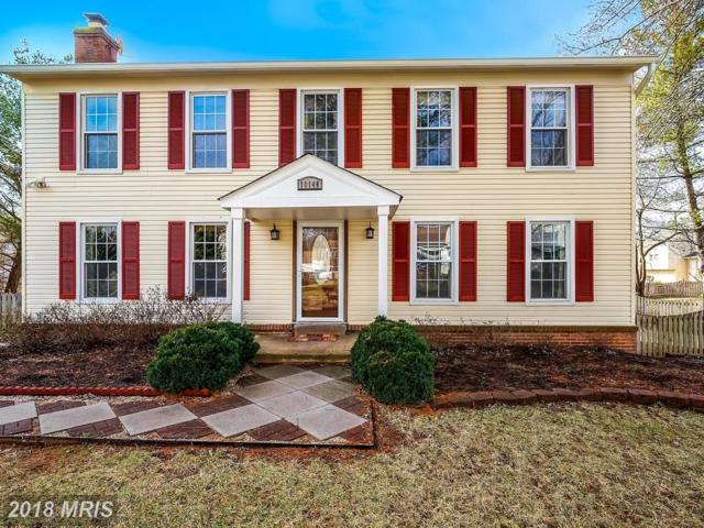 10148 Yorktown Drive, Great Falls, VA 22066 (#LO10163348) :: The Dwell Well Group
