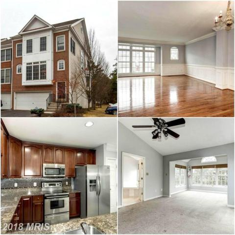 25231 Dunvegan Square, Chantilly, VA 20152 (#LO10163375) :: Network Realty Group