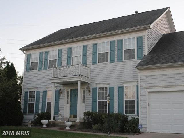 20853 Cardiff Court, Ashburn, VA 20147 (#LO10163487) :: Pearson Smith Realty