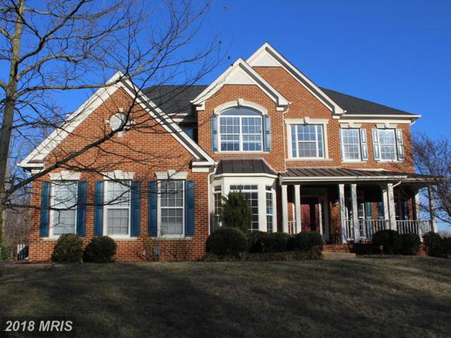 22534 Forest Run Drive, Ashburn, VA 20148 (#LO10163885) :: Pearson Smith Realty