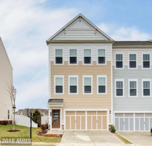 23572 Boca Field Terrace, Ashburn, VA 20148 (#LO10163893) :: Pearson Smith Realty