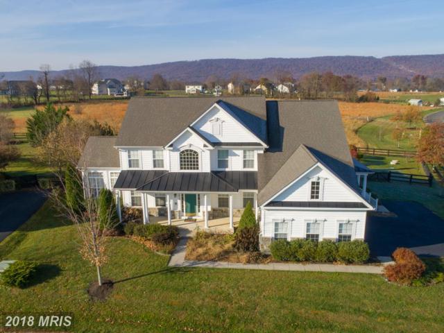 38815 Dutchmans Knoll Drive, Lovettsville, VA 20180 (#LO10164134) :: Pearson Smith Realty