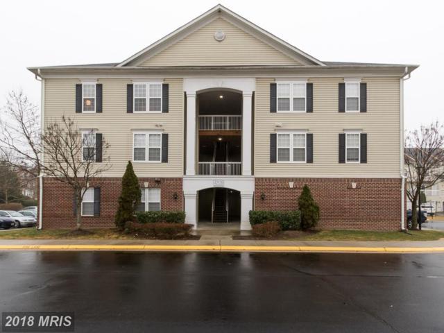 42539 Mayflower Terrace #301, Ashburn, VA 20148 (#LO10165724) :: CR of Maryland