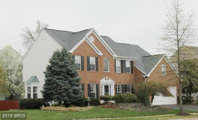 43376 Hyland Hills Street, Chantilly, VA 20152 (#LO10165960) :: Colgan Real Estate