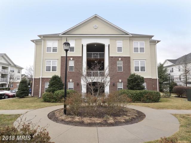 42492 Mayflower Terrace #102, Ashburn, VA 20148 (#LO10166517) :: CR of Maryland