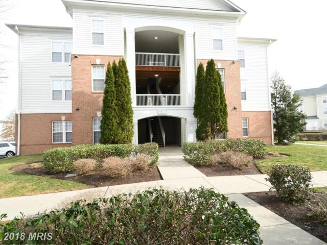 22611 Blue Elder Terrace #104, Ashburn, VA 20148 (#LO10167776) :: CR of Maryland