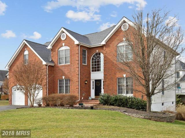 22557 Middleburg Chapel Court, Ashburn, VA 20148 (#LO10168155) :: LoCoMusings