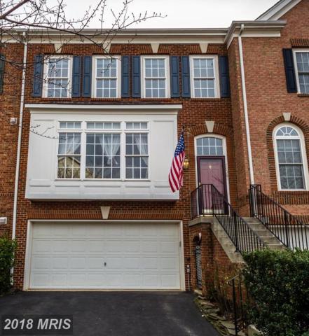 19064 Grouse Terrace, Leesburg, VA 20176 (#LO10168900) :: SURE Sales Group