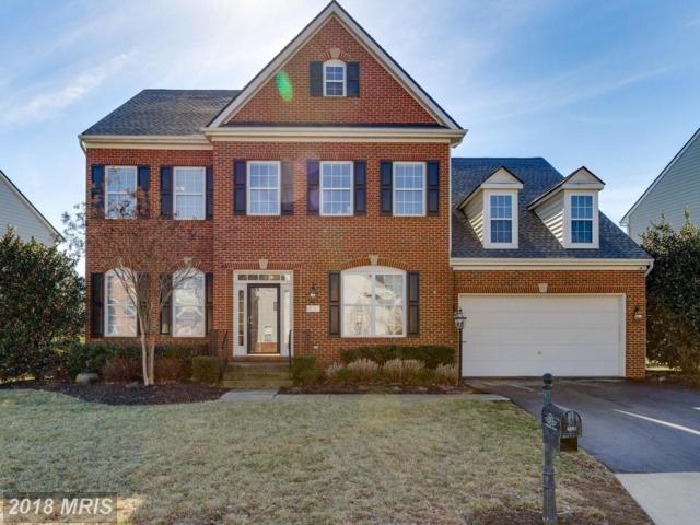 42065 Bear Tooth Drive, Aldie, VA 20105 (#LO10169050) :: CR of Maryland