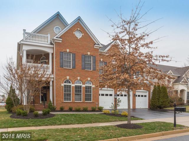 43696 Red House Drive, Leesburg, VA 20176 (#LO10169124) :: SURE Sales Group