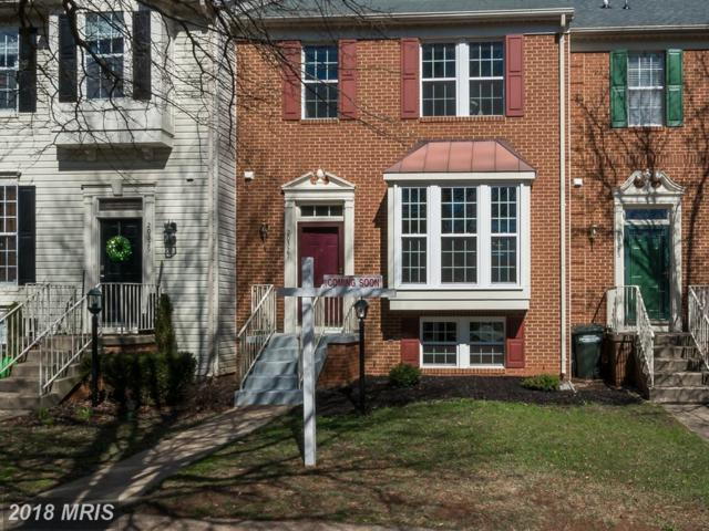 20327 Briarcliff Terrace, Sterling, VA 20165 (#LO10169772) :: CR of Maryland