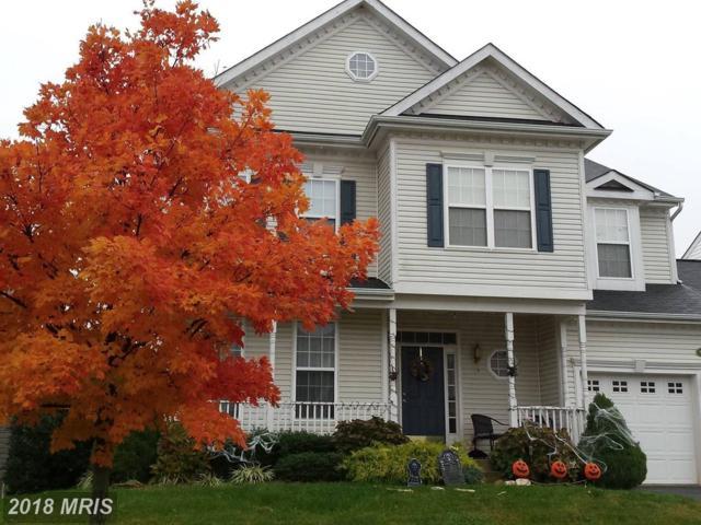 17654 Cleveland Park Drive, Round Hill, VA 20141 (#LO10169977) :: LoCoMusings