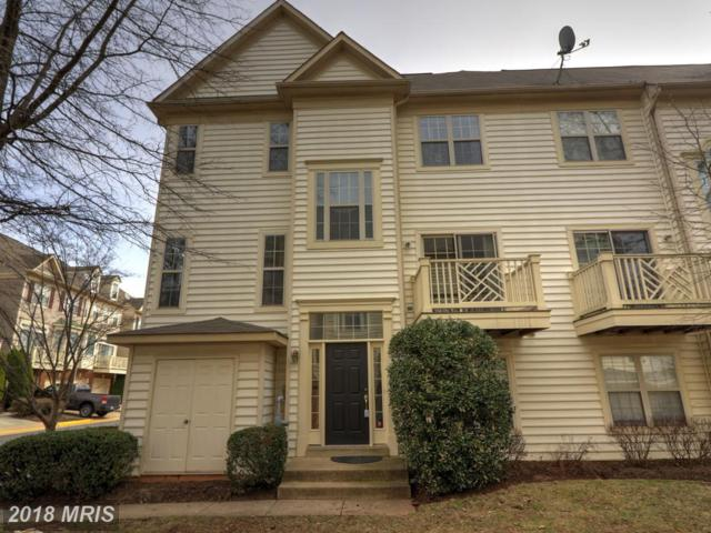 46381 Monocacy Square, Sterling, VA 20165 (#LO10170240) :: CR of Maryland