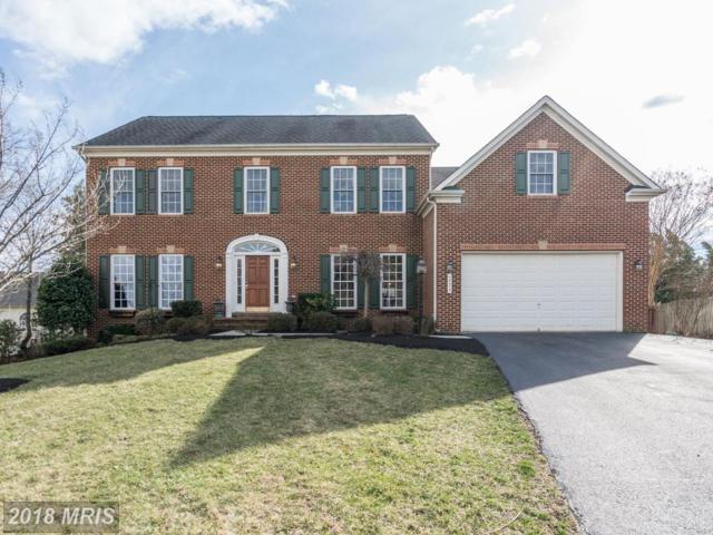 43275 Thaddeus Lane, Leesburg, VA 20176 (#LO10170437) :: CR of Maryland