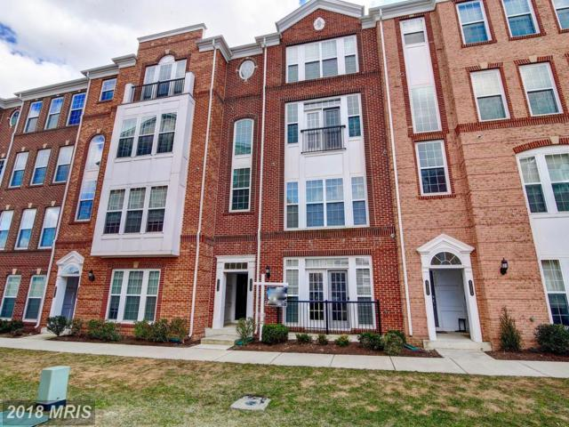 42808 Lauder Terrace, Ashburn, VA 20147 (#LO10173964) :: The Vashist Group